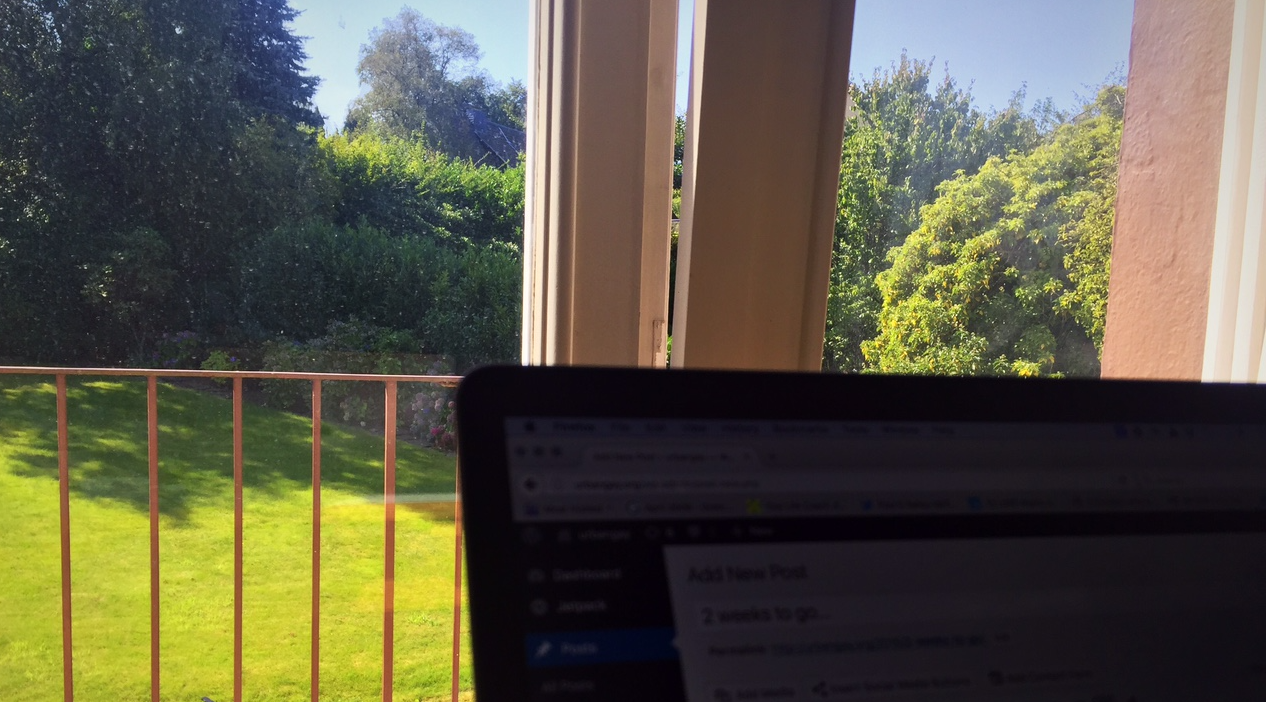 """My temporary """"office"""" at my parent's home in Germany. I love the view!"""