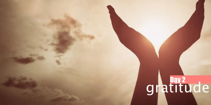 Day 2: Gratitude